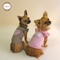 Inamorada Pet Couture