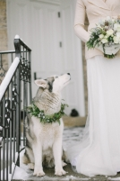 wedding-Husky-in-Winter-Wedding-600x900